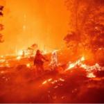 تحطم طائرة إطفاء أثناء إخماد الحرائق في تركيا