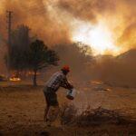 بعد تورطهما في إشعال الحرائق.. الجزائر تستهدف حركتي
