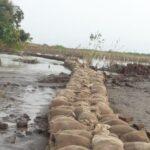 السودان: انخفاض منسوب النيل الأزرق لليوم الخامس على التوالي