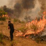 تركيا تكافح حرائق الغابات لليوم الثامن وتسيطر على حريق قرب محطة كهرباء