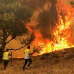 مراسلنا يستعرض آخر مستجدات حرائق الغابات في الجزائر