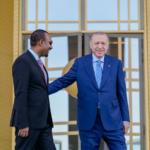 سد النهضة يتصدر مباحثات أردوغان وآبي أحمد في تركيا