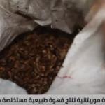 فتاة موريتانية تنتج قهوة مستخلصة من نوى التمر بديلا عن البن
