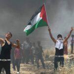 فلسطين: الاحتلال يستهدف المشاركين في التظاهرات السلمية بالرصاص الحي
