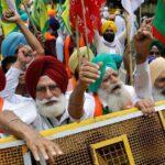 آلاف المزارعين الهنود يواصلون الاحتجاجات على قوانين زراعية
