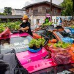 سيارات أجرة تايلاندية تحول أسقفها لحدائق صغيرة
