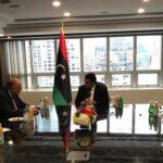 المنفي وشكري يبحثان مستجدات الملف الليبي